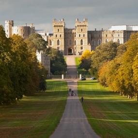 Windsor long walk in sunshine