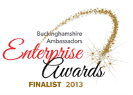 Enterprise_Awards_Finalist_2013