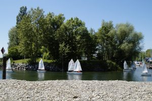 sailing boats on lake with trees